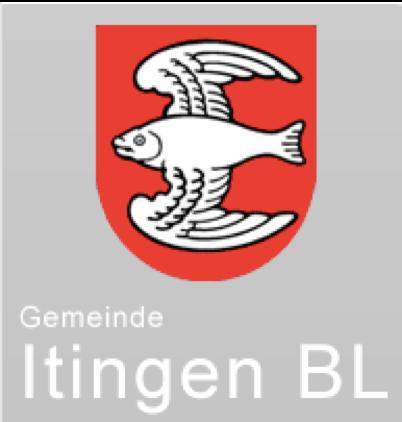 4.03.2021 Volksstimme Carte Blanche «Für Itingen und Umgebung»